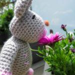 Sabrinas Rosalie smells of a flower