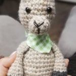 Michaela's alpaca has been individualized with cute details